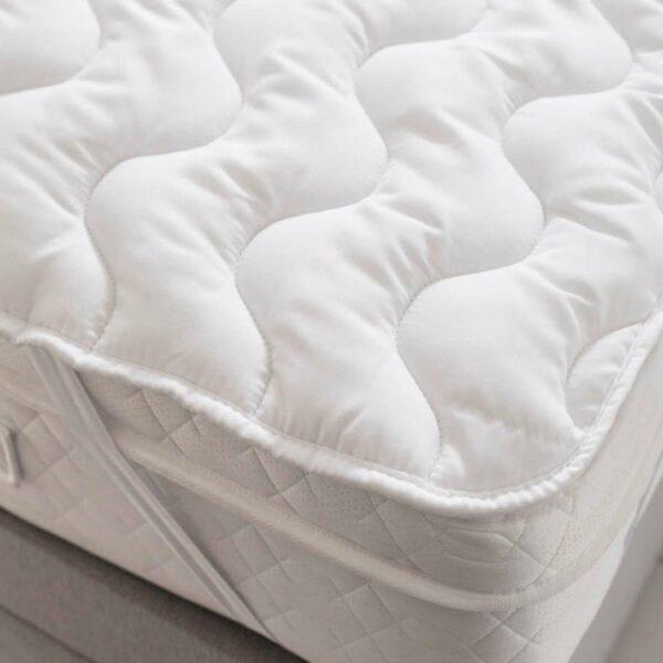 snug_on_bed